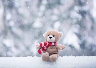 冬季坚持让孩子上幼儿园不断续、不迟到,原来好处