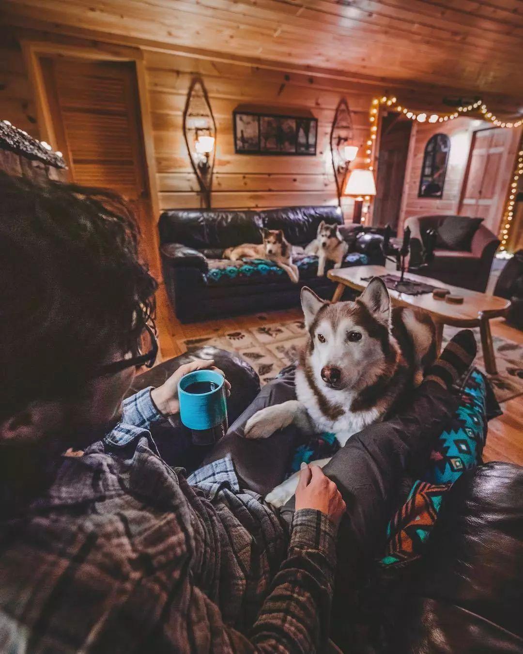 两人三狗在荒郊野外安了家,这样的生活你喜欢吗?
