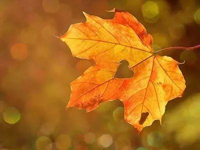 立秋之时余暑在 顺时养阴与润肺